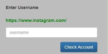 see private instagram with Instalooker