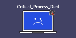 Critical_Process_Died